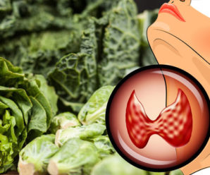 Hypothyroidism Diet: 6 Foods to Eat and 6 Foods to Avoid